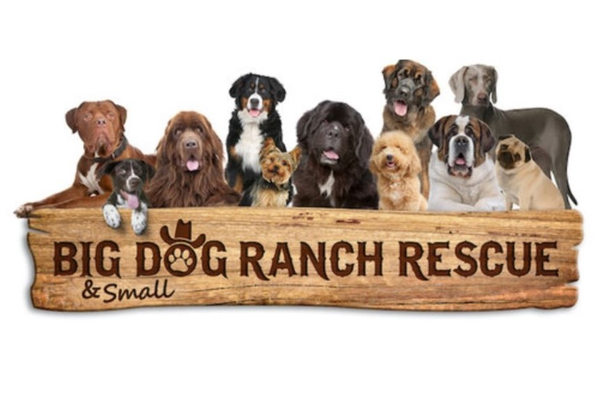 Big Dog Ranch