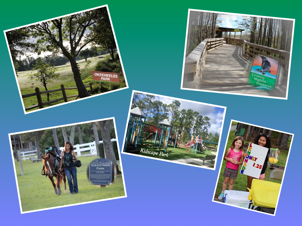 Collage parks2 - Copy
