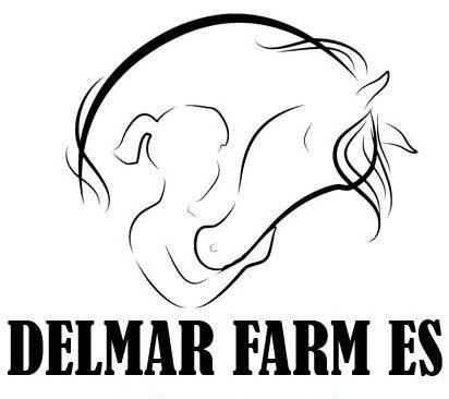 Delmar Reach eXp Co